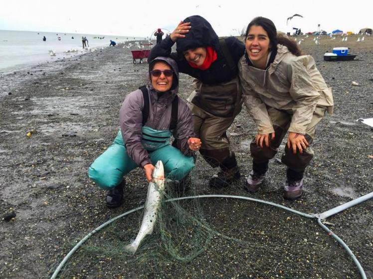 Pesca de salmones en Kenai / Fishing salmon at Kenai