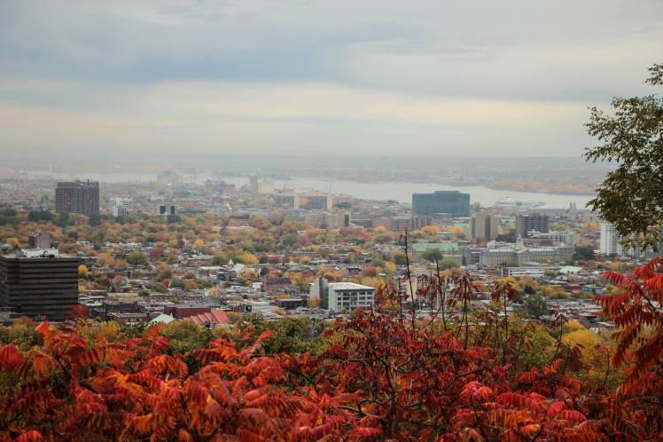Vista de Montreal desde el Monte Royal / View of Montreal from Mt. Royal