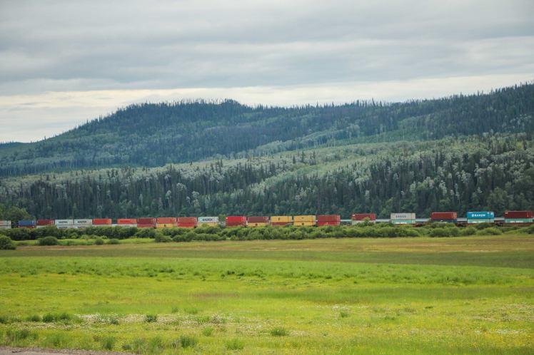 Trenes cargados en medio del paisaje