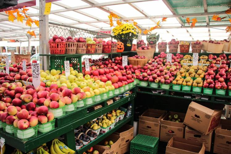 Gigante variedad de manzanas canadienses