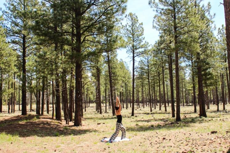 Haciendo yoga en pijama en un bosque de Arizona, Estados Unidos